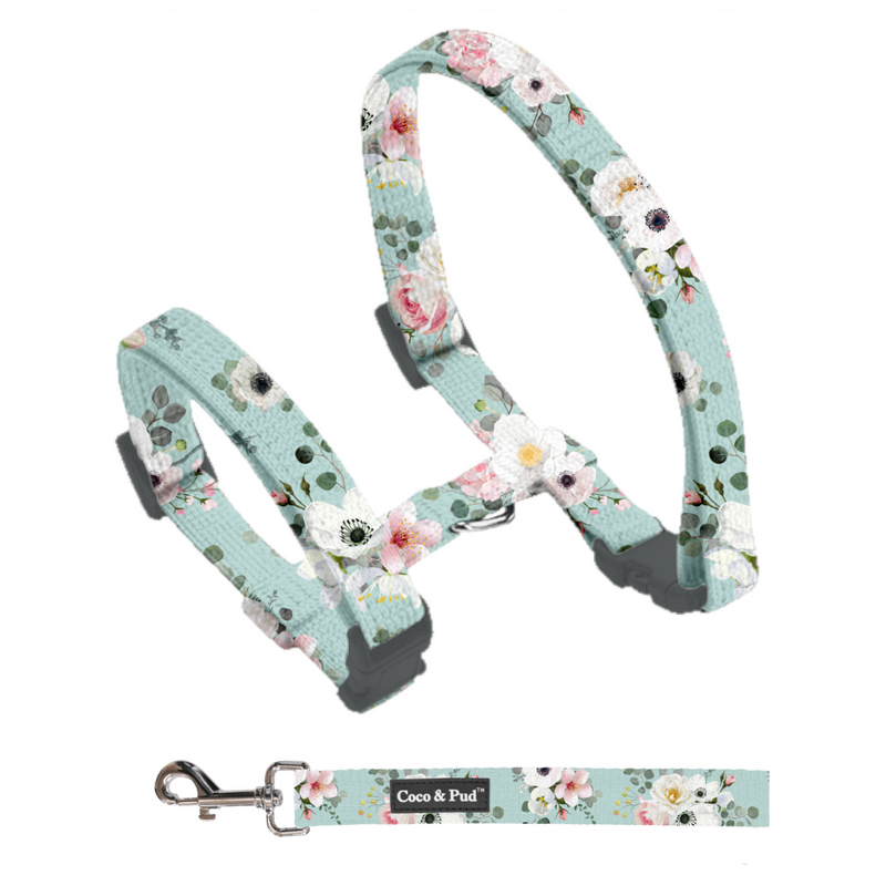 Coco & Pud French Azure Cat Harness & Lead Set