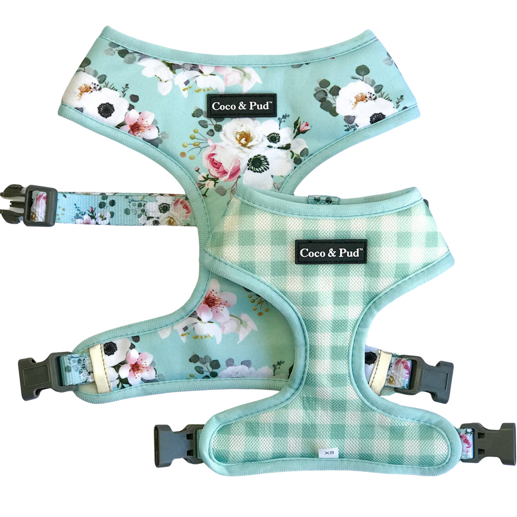 Coco & Pud French Azure Reversible Dog Harness