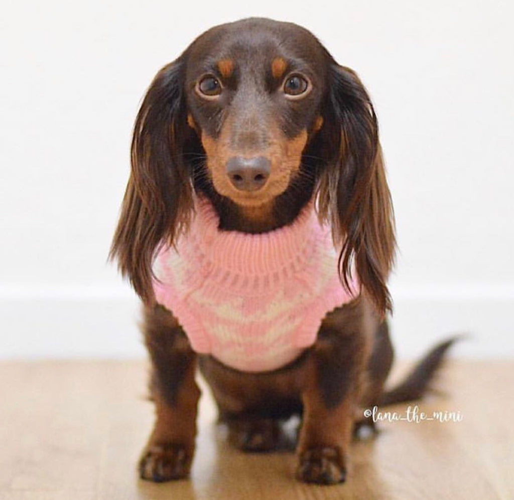 Houndstooth Dog Sweater - Pink/ White