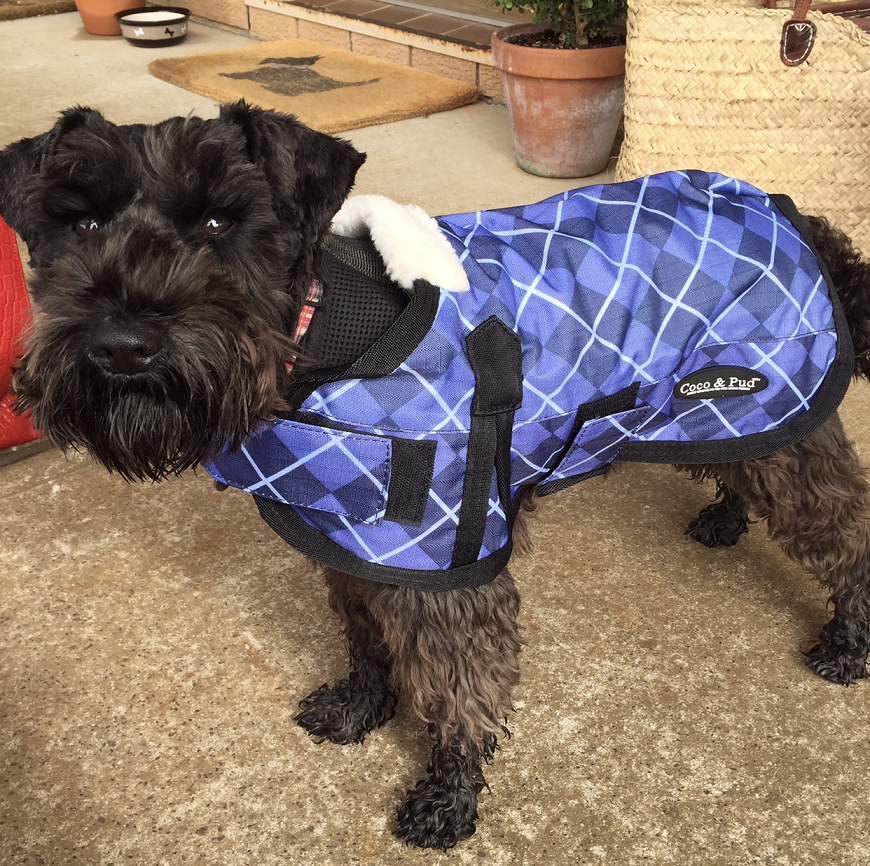 Coco & Pud 3009 Waterproof Dog Coat 30-55cm-Blue Check & doggy