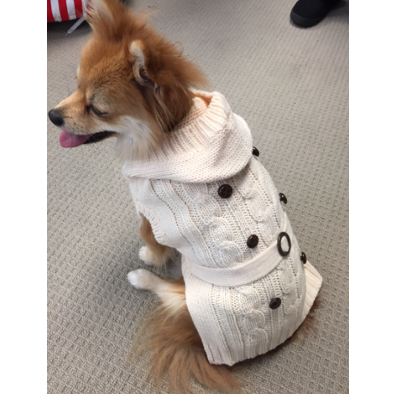Coco & Pud Paris Dog Sweater - Cream