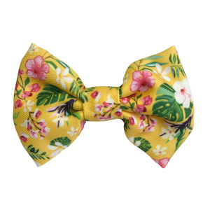 Coco & Pud Summer Sunrise Bow tie