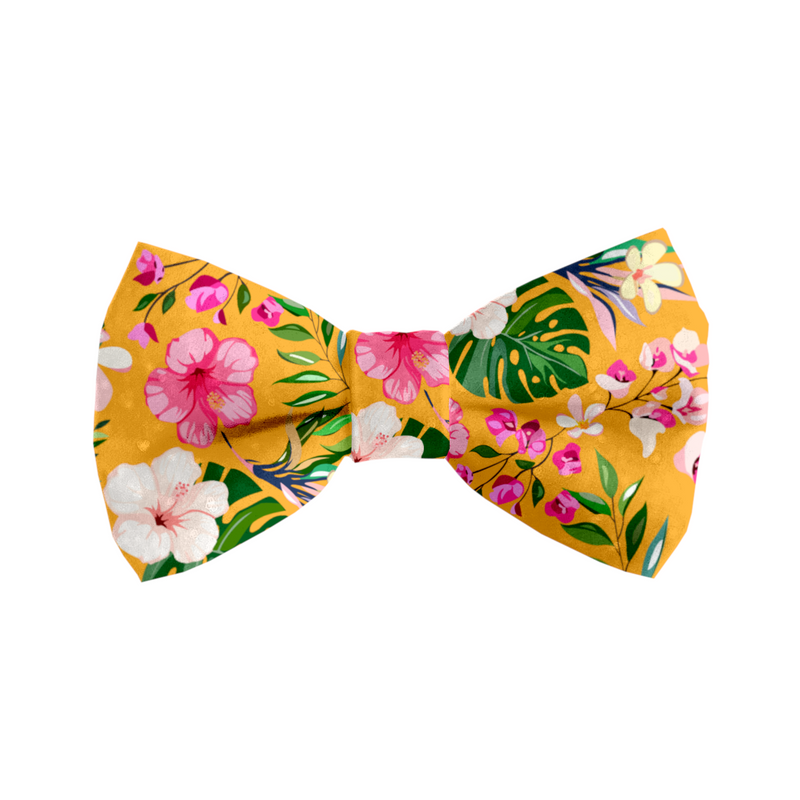 Coco & Pud Summer Sunrise Cat Bowtie