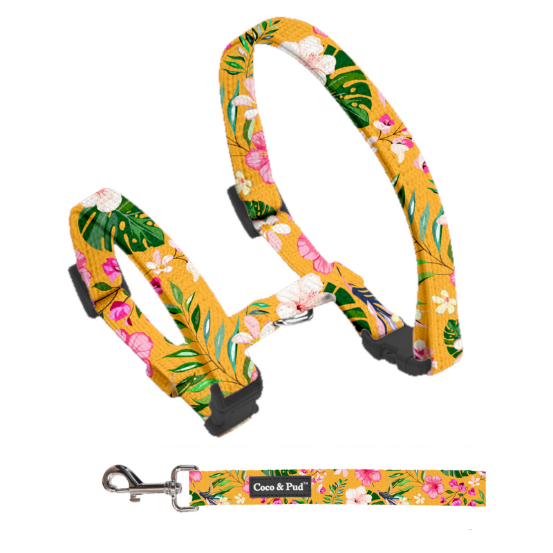 Coco & Pud Summer Sunrise Cat Harness & Lead Set