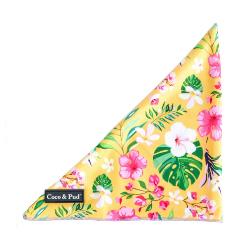 Summer Sunrise Tie Up Bandana - Coco & Pud