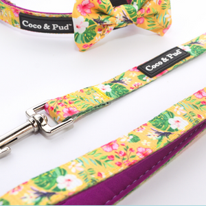 Coco & Pud Summer Sunrise Reversible Dog lead/ Leash - Coco & Pud