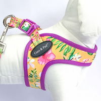 Coco & Pud Summer Sunrise UniClip Dog Harness