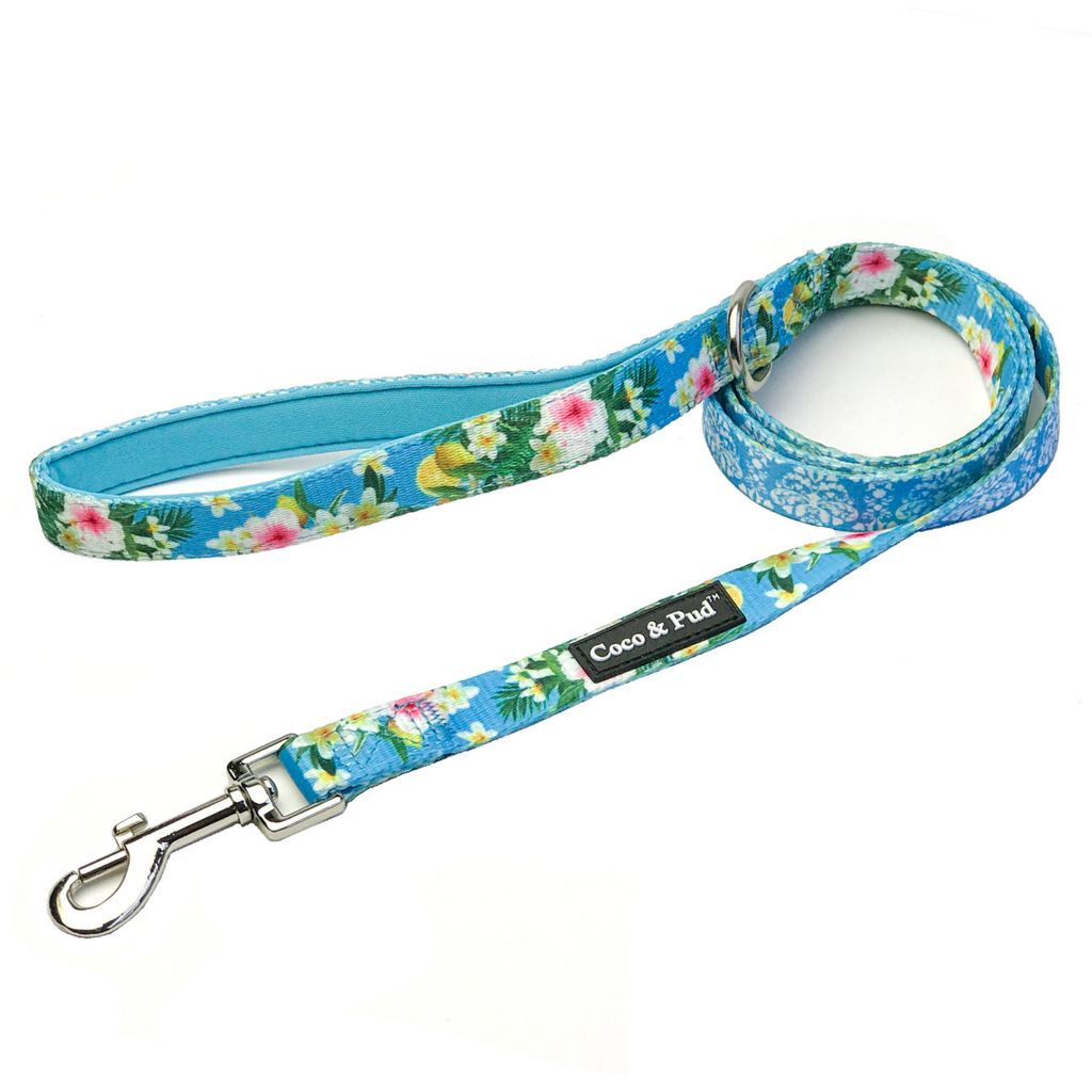Coco & Pud Flamingo Tropical Dog Leash/ Lead