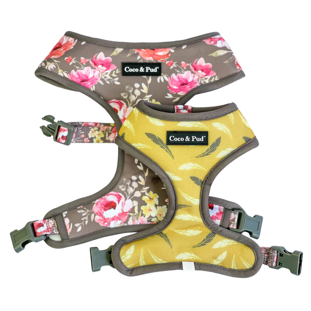 Coco & Pud Vintage Garden Reversible Dog Harness