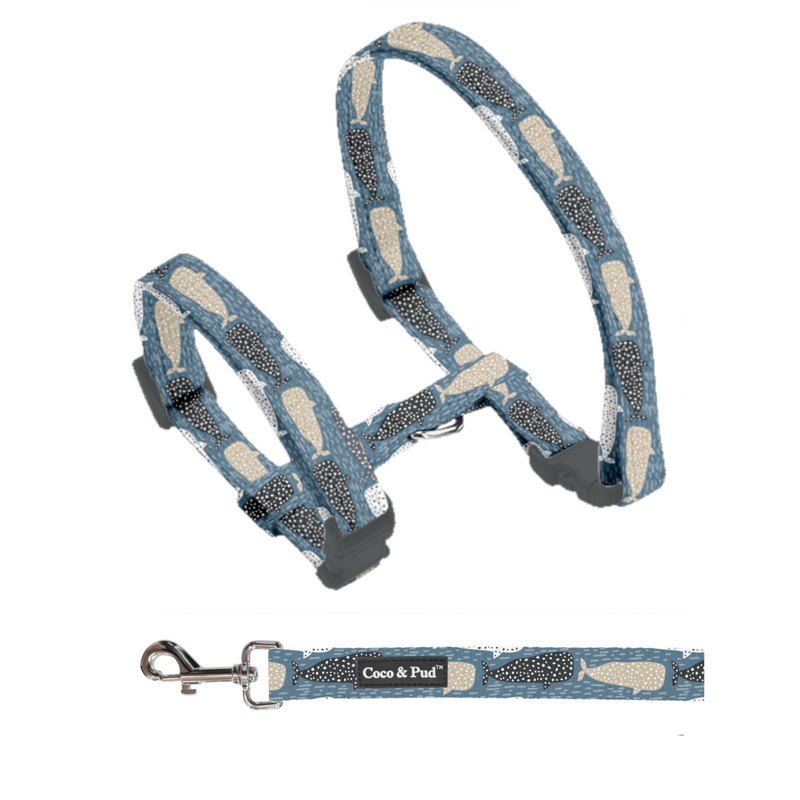 Coco & Pud Whale of a Time Cat Harness & Lead Set