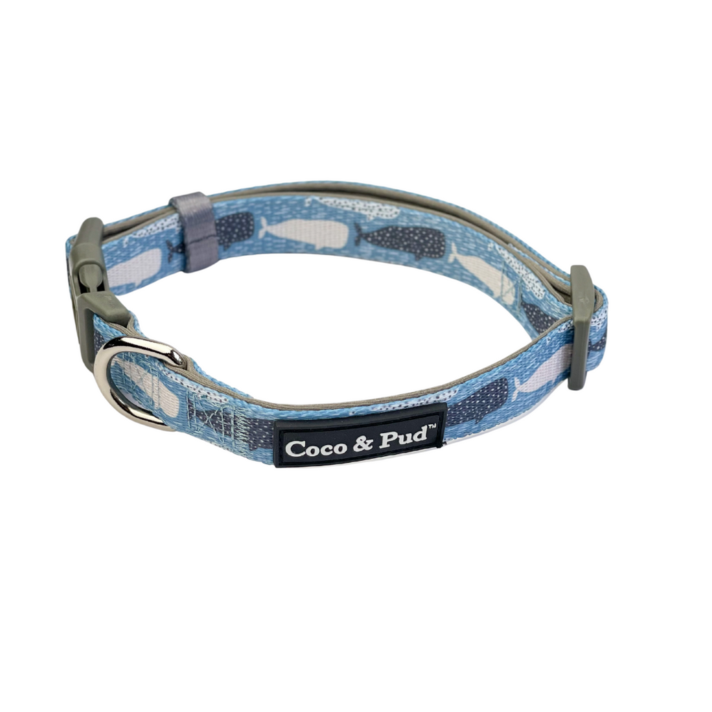 Coco & Pud Whale of a Time Dog Collar