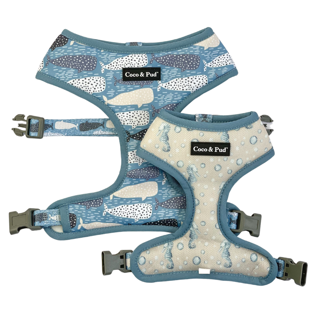 Coco & Pud Whale of a Time Reversible Dog Harness