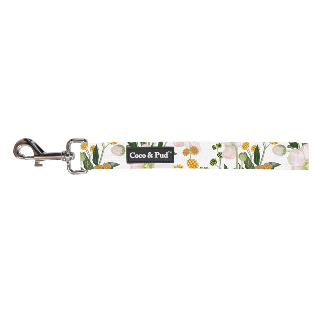 Coco & Pud Windflower Cat Lead