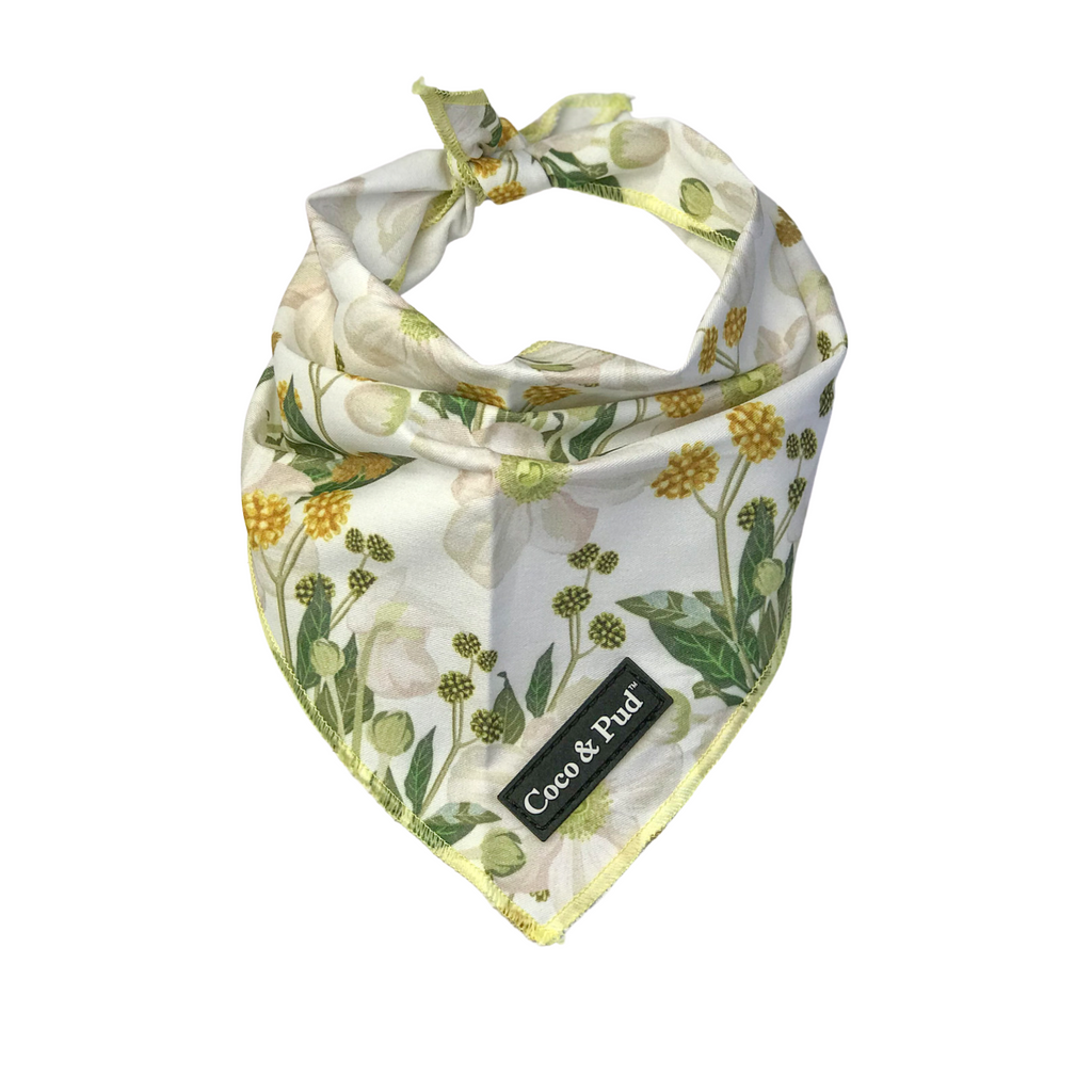 Coco & Pud Windflower Cotton Bandana
