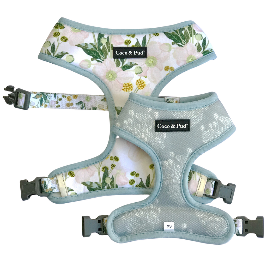 Coco & Pud Windflower Reversible Dog Harness