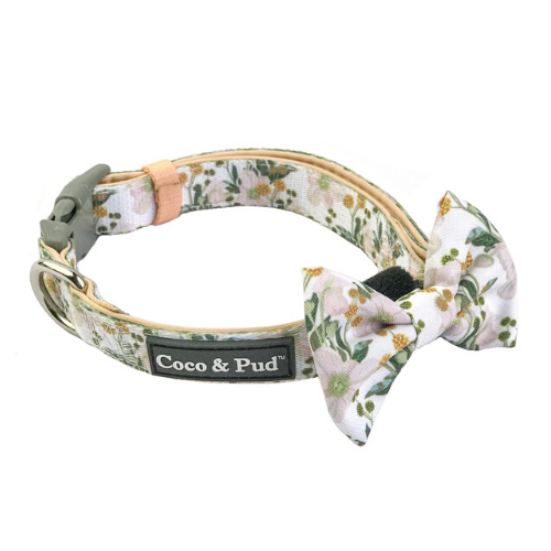 Coco & Pud Windflower Collar & Bow tie - Coco & Pud