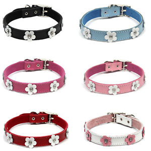 DOGUE Foxy Dog Collar - Coco & Pud
