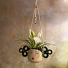 Geisha Hanging Planter