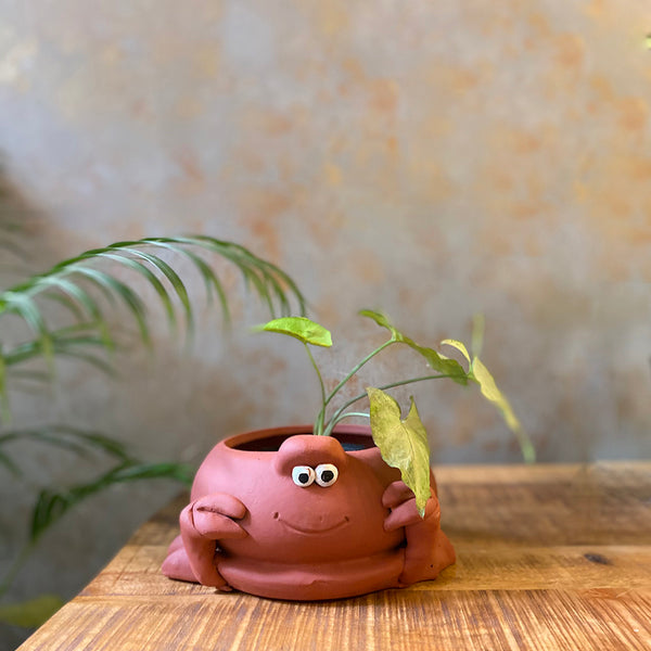 Terracota Crab Planter