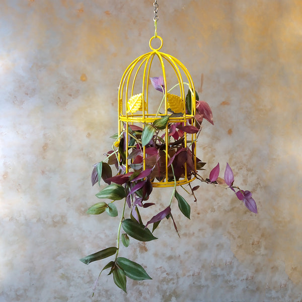 Garden décor Bird Cage Planter