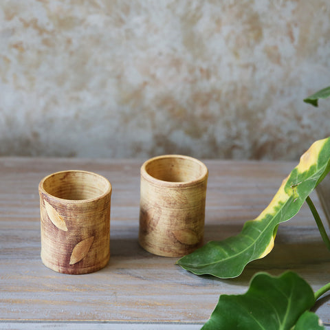 Foliage Mini Planters(Set of 2)