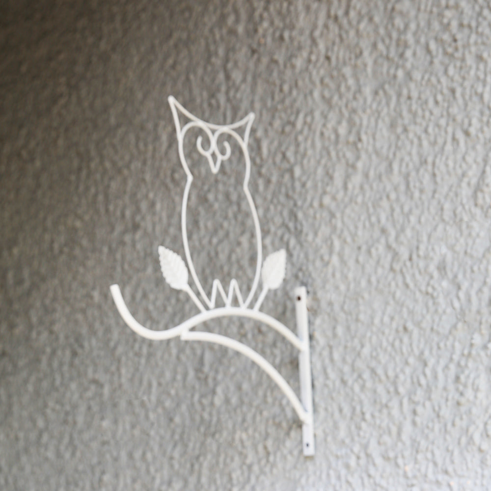 Owl Wall Planter Hanging