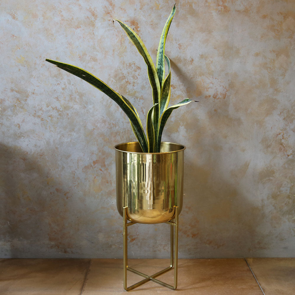 Pure Brass Planter with stand - Medium