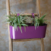 3 Pot Railing Planter