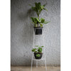 Tall Two Pot Holder/Creeper Stand