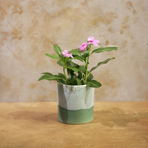 Ceramic Mini  planter