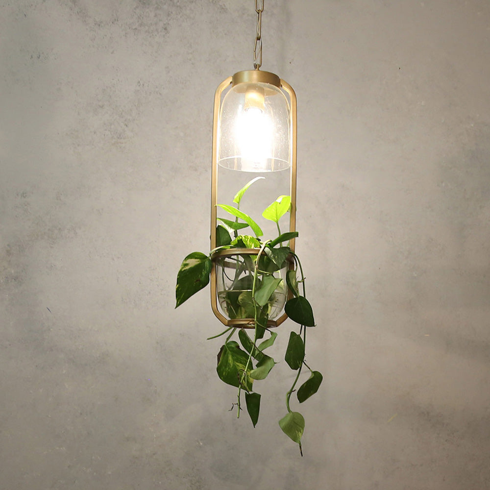 Planter Hanging Light