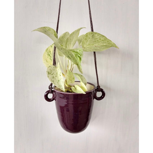 Purple Hanging Planter