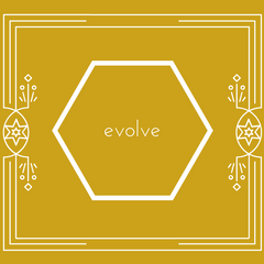 New years plan: evolve