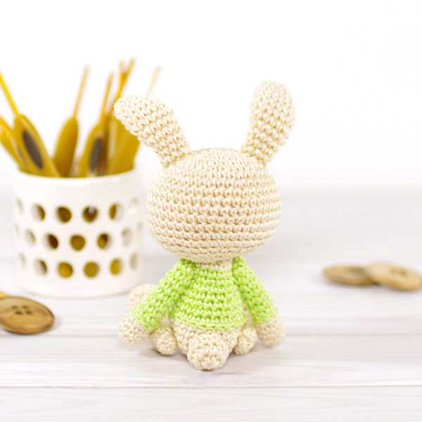 Small Bunny in a Green Sweater