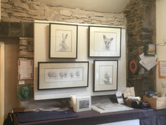 Thornthwaite Galleries