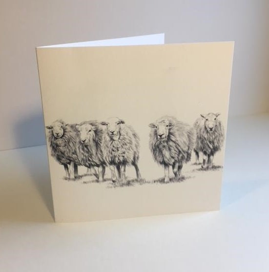The Herdy card pack