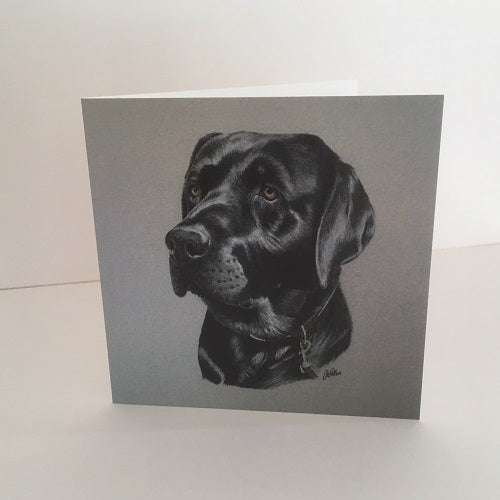 Cupar, Black Labrador Greetings Card