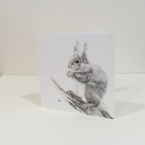 Tufts Greeting Card