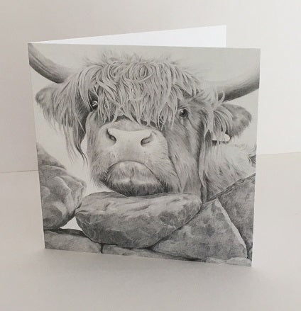 Nosey II - Highland cow greeting card