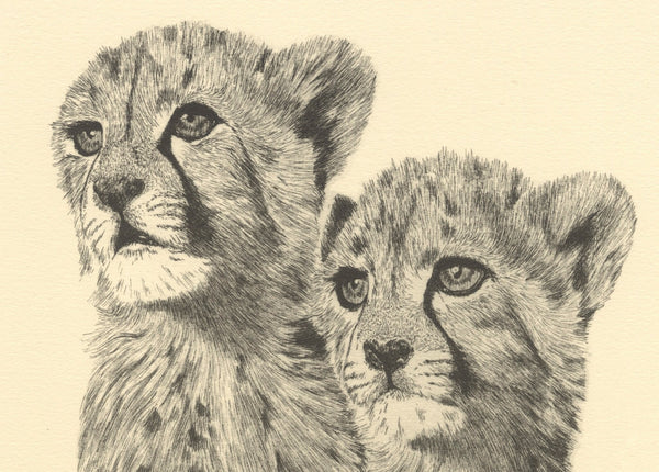 Cheetah 'Brothers'