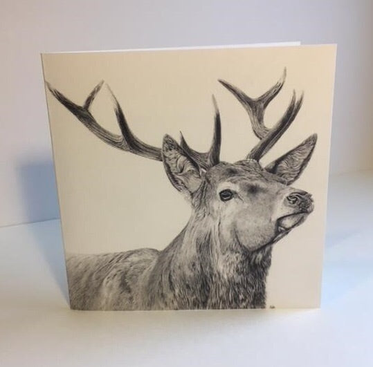 Glen red stag Greetings Card