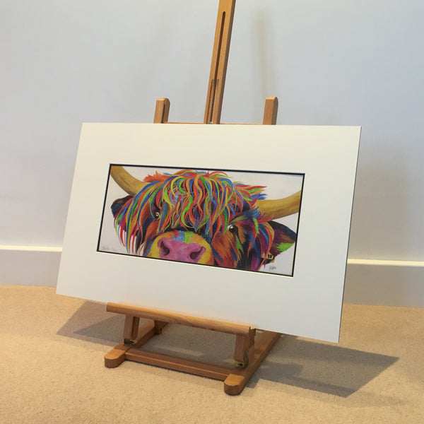 Colour Splash 'Nosey' the Highland cow - Limited Edition Giclee Print