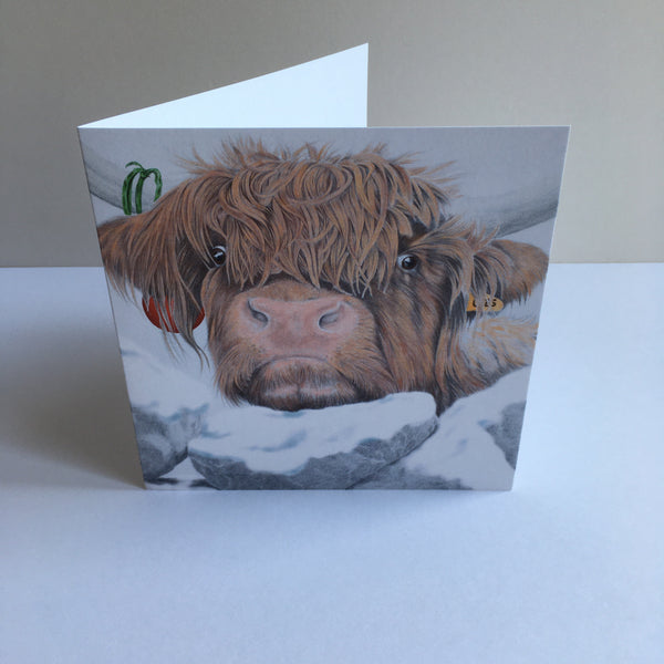 Festive Nosey Cow - Highland cow greeting card