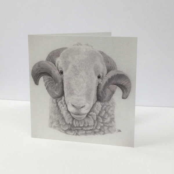 White Faced Woodland Ram Greetings Card