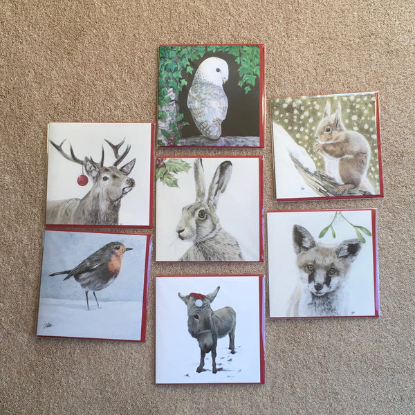 The Christmas card pack