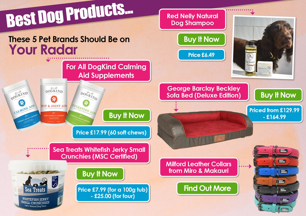 K9 Magazine's Top 5 Best Dog Products