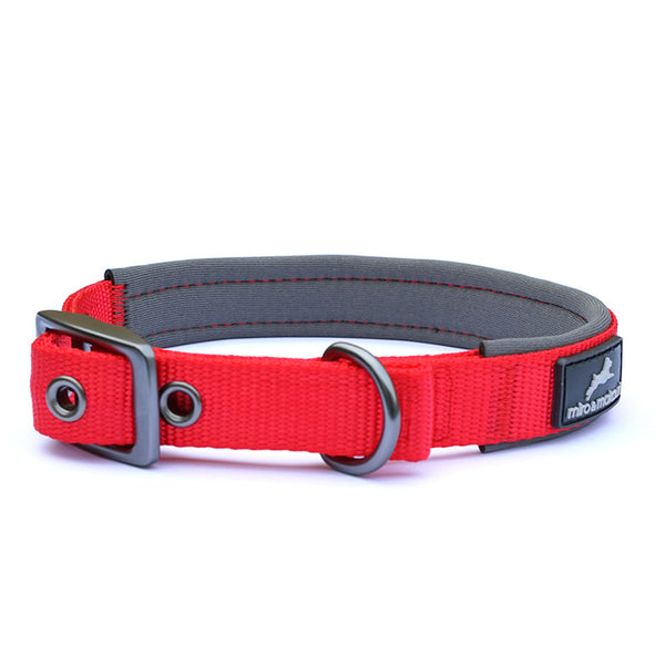 Padded Nylon Buckle Collars - Miro&Makauri