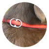 RUBBER HANDLE GRIP - Slip Lead with Figure 8 Training Aid. - Miro&Makauri