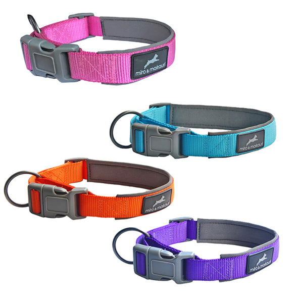 Neoprene Padded Nylon Clasp Collar - Turquoise, Pink, Orange, Purple - Miro&Makauri