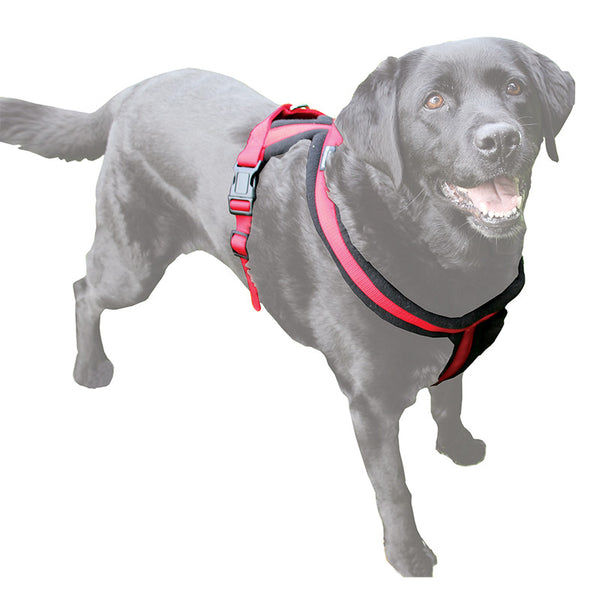 Premium Fleece Padded Harness